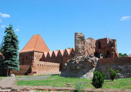 Ruiny Zamku Krzyżackiego zdjęcie nr 1