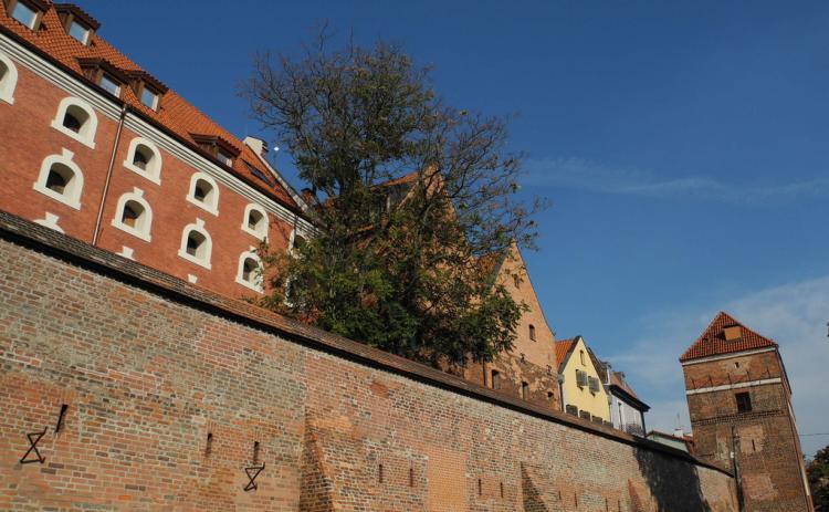 Mury i bramy miejskie