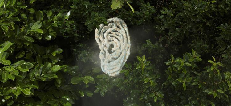 Marco Giordano - praca Self Fulfilling Ego